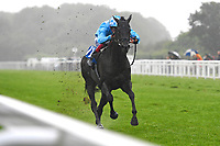 Winner of The S H Jones Wines Handicap Maid of Spirit ridden by Adam Kirby and trained by Clive Cox during Horse Racing at Salisbury Racecourse on 14th August 2019