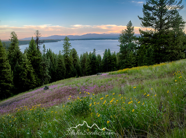 Idaho, West Central, McCall. Payette Lake under evening skies on a summer evening as viewed from the Scenic Drive in Ponderosa State Park..