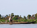 MAN ON BOAT CROSSING TONLE SAP RIVER