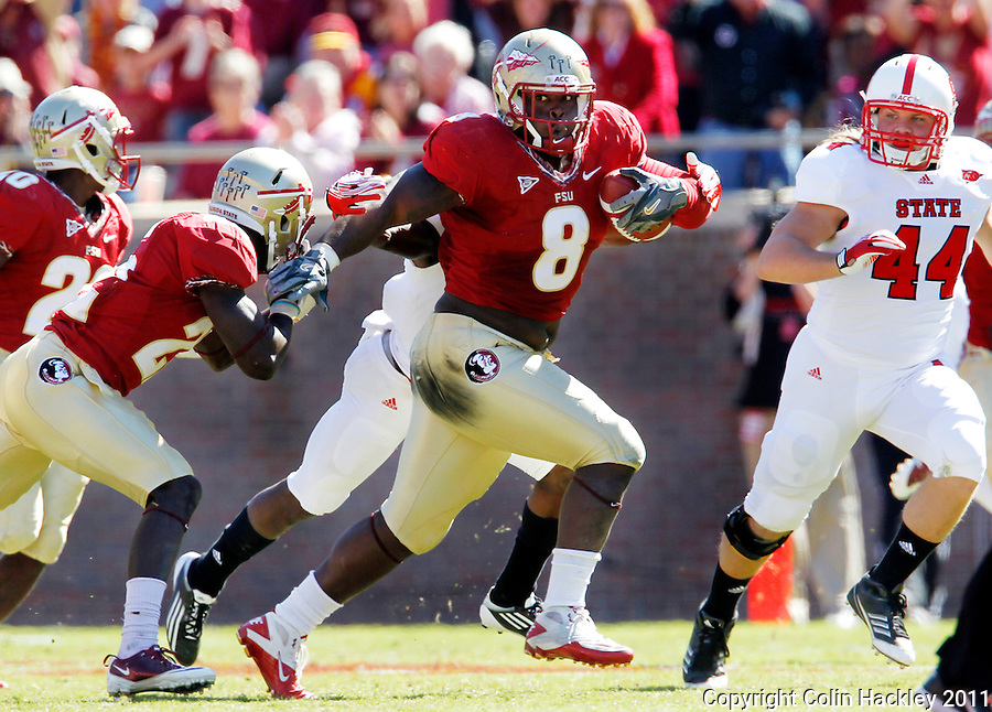 TALLAHASSEE, FL 10/29/11-FSU-NCST102911 CH-Florida State's Timmy Jernigan runs after recovering a fumble from N. C. State quarterback Mike Glennon during second half action Saturday at Doak Campbell Stadium in Tallahassee. The Seminoles shut out the Wolfpack 34-0..COLIN HACKLEY PHOTO