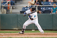 Jordan Cowan #3 of the Everett AquaSox squares around to bunt during a game against the Salem-Keizer Volcanoes at Everett Memorial Stadium in Everett, Washington on July 14, 2014.  Salem-Keizer defeated Everett 6-4.  (Ronnie Allen/Four Seam Images)