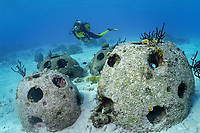 Scuba diver swimming by reef balls, artificial reef, Curacao, Netherland Antilles, Caribbean, MR