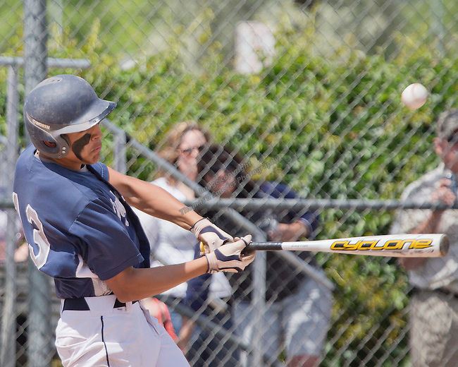 Virginia City Carlos Robledo swings against Wells in the championship of the NIAA Division IV State baseball tournament on Saturday, May 24, 2014 at Sparks High School.