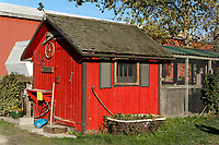 Red wooden shed at Westham Island Herb Farm, Delta, British Columbia, Canada