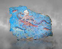 Roman Fresco with a fight scene between octopus, lobster and eel, 125-150 AD. (mosaico fauna marina da porto fluviale di san paolo), museo nazionale romano ( National Roman Museum), Rome, Italy. inv. 463Z4.  <br /> <br /> Excavated from the Porto di San Paolo near the Via Portuense, these frescoes decorated the thermal area of a suburban Roman Villa. The reconstructed fresco fragments, depict a group of three fighting animals: an octopus (octopus vulgaris) clutches a moray eel (muraena helena) and a lobster (palinurus vulgaris) in its tentacles; around them mud mullets (mullus barbatus) and rock mullets (mullus surmuletus) try to escape. Incriptions on the frescoes suggesy that the villa owner was from Alexandria where this style of nautical mosaic and fresco  decorations is found.