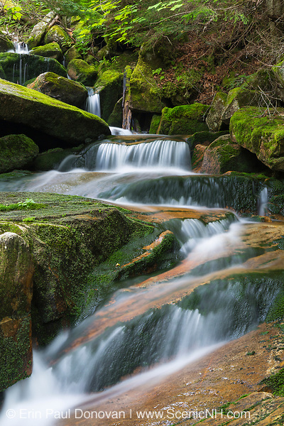 Cascade covered in green moss on Cold Brook in Randolph, New Hampshire during the summer months.