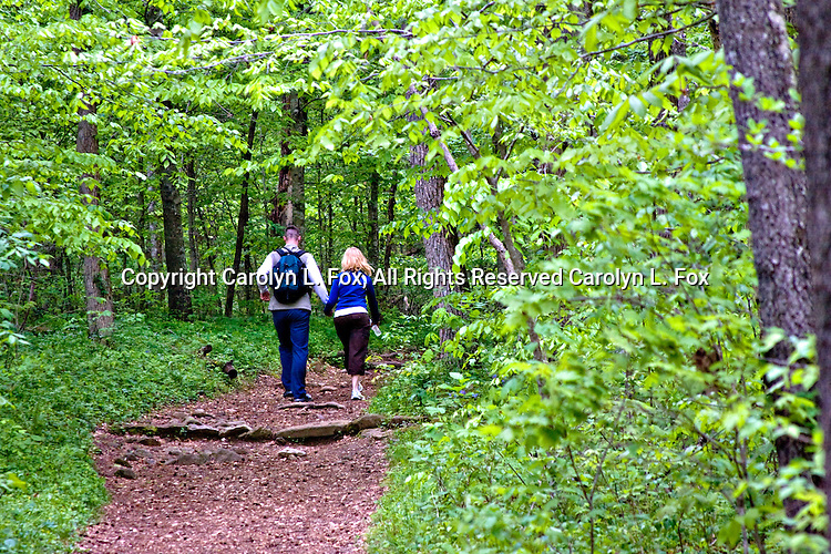 A man and a woman walk through the woods.