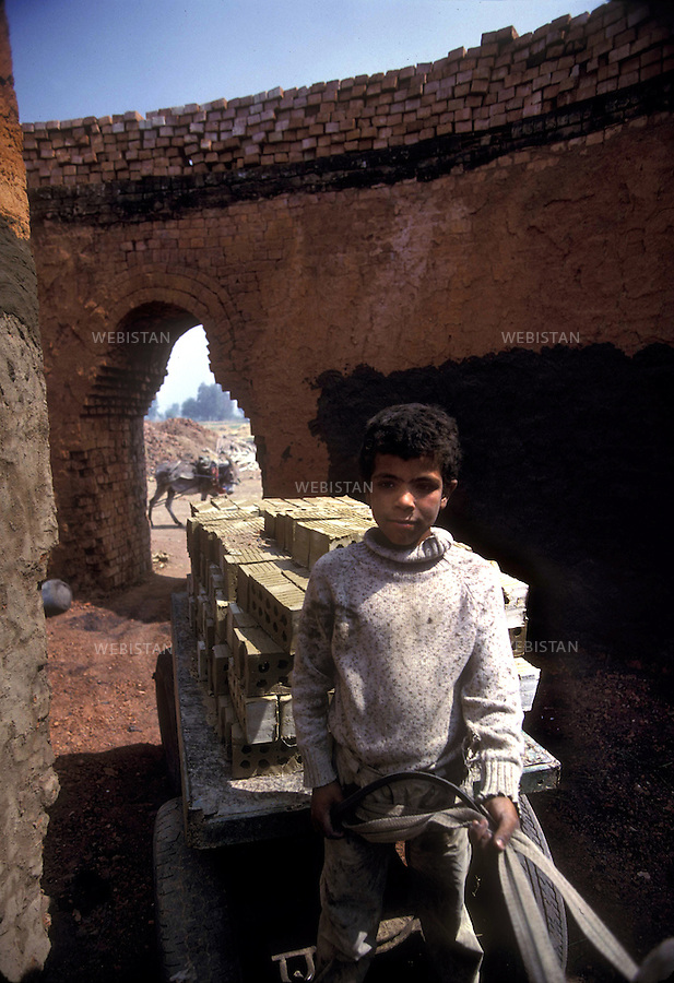 Egypt. Tabakh's brickyard, near Zifta. May 1996. A child at work in the brickyard, in charge of transporting the bricks on a car pulled by a donkey..Egypte. Briqueterie de Tabakh, pres de Zifta. Mai 1996. Dans la briqueterie, un enfant au travail, charge de transporter des briques sur une carriole tiree par un mulet..