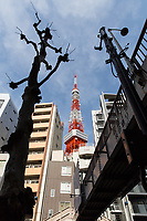 The Tokyo Tower, surrounded by residential and office buildings.<br />