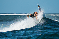 Namotu Island Resort, Nadi, Fiji (Monday, February 29 2016): Brisa Hennessy (HAW). - The swell is on the way back up today with 2'-3' waves hitting Namotu Lefts and Cloudbreak with very light Trade Winds. <br /> The  guests took advantage of the small conditions with a trip to Cloudbreak, snorkelling, SUP paddling around the island and fishing. <br /> A new swell is due Tuesday and the winds are set to stay light all week.<br /> <br /> Photo: joliphotos.com