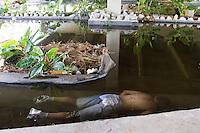GUARULHOS, SP 02.01.14 - HOMICÍDIO / GUARULHOS-SP - O corpo de Daniel Santos Fabricio Albino, 18 anos, vítima de homicidio (morte a esclarecer) foi encontrado na Rua Lídio Faustino de Santana, (Sob Viaduto Cidade de Guarulhos) na manhã desta quinta-feira, (02). (Foto: Geovani Velasquez/Brazil Photo Press).