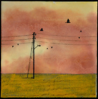 Encaustic painting with photography mixed media with oranges and green of birds in field with telephone poles