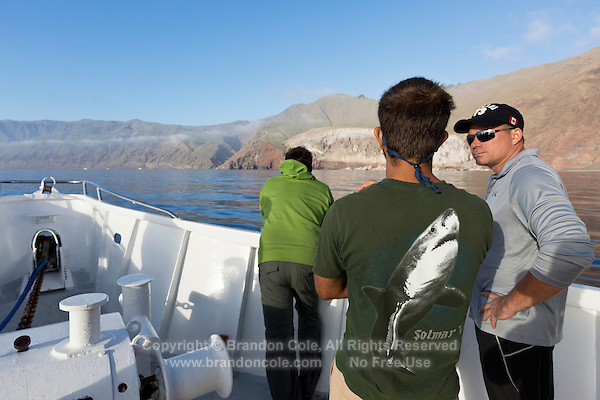 TE0018-D. Cage diving with Great White Sharks (Carcharodon carcharias) at Guadalupe Island attracts people from all over the globe. Here, shark fans onboard the luxury live-aboard diving boat Solmar V eagerly wait for the cages to be deployed and the diving to begin. Baja, Mexico, Pacific Ocean.<br /> Photo Copyright &copy; Brandon Cole. All rights reserved worldwide.  www.brandoncole.com
