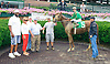One Tough Cowgirl winning at Delaware Park on 7/15/15