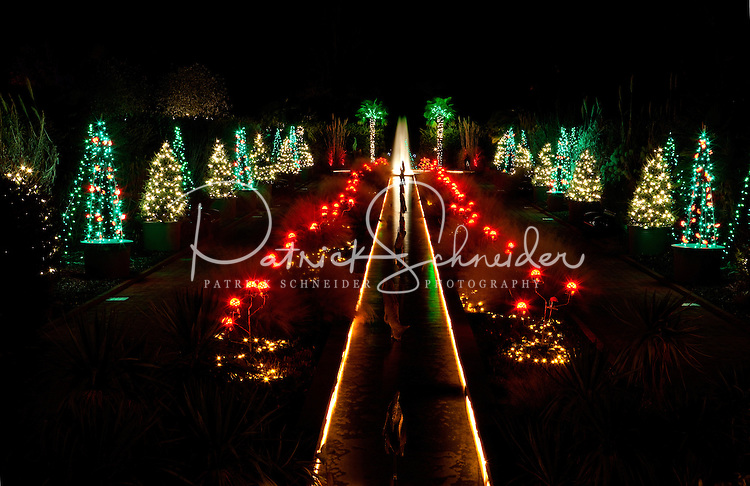 Holiday lights at the garden daniel stowe botanical - Daniel stowe botanical garden christmas ...