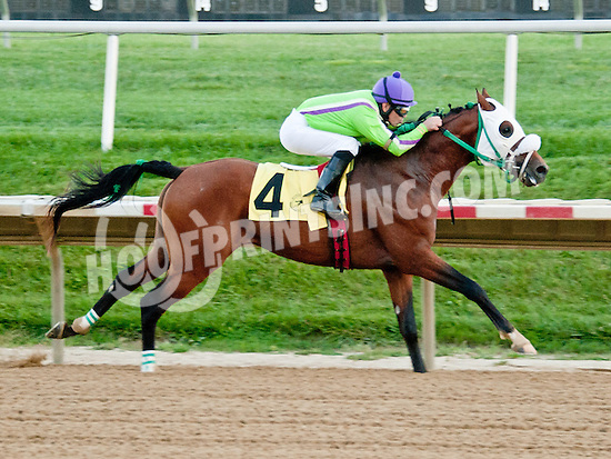 Thess is Awesome winning The Alec Courtellis Arabian Juvenile Stakes (gr 3) at Delaware Park on 9/14/13