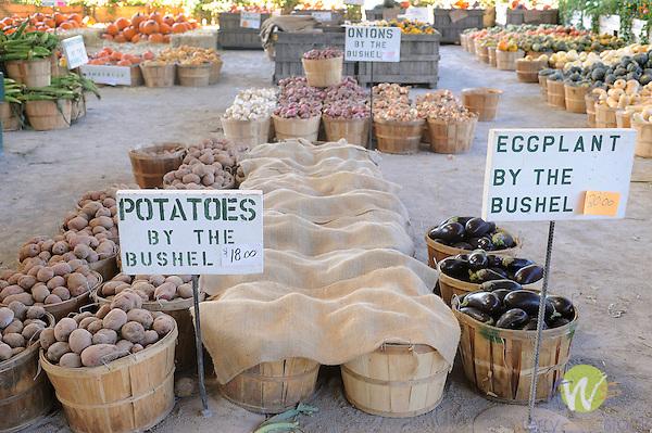 Vegetable stand.eggplant and potato