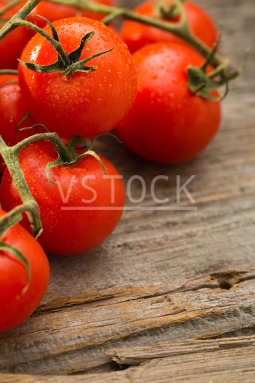 Vine of cherry tomatoes