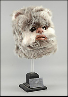 £10,000 for Ewok head.