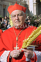 Cardinal  Grocholewski  Zenon ,Pope Benedict XVI leads the Palm Sunday mass in Saint Peter's Square at the Vatican on April 17 2011.