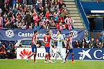 Atletico de Madrid's players and Celta de Vigo's players during La Liga Match at Vicente Calderon Stadium in Madrid. May 14, 2016. (ALTERPHOTOS/BorjaB.Hojas)