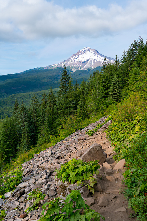 Mt. Hood National Forest, Oregon Tom Dick and Harry Mountain in the Mt. Hood National Forest offers stunning views of the Cascades, including Mt. Adams, Mt. Hood and Mt. Jefferson.  It's a beautiful hiking trail located past the famed Mirror Lake, Oregon