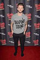 """LOS ANGELES - JUN 27:  Travis Wall at the """"Shaping Sound: After the Curtain"""" Opening Night at the Royce Hall, UCLA on June 27, 2017 in Westwood, CA"""