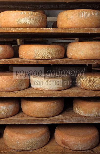 """Europe/France/Aquitaine/64/Pyrénées-Atlantiques/Tardets: Fromages fermiers AOC Iraty-Ossau dans la cave d'affinage """"chez Pitrau"""" (AUTORISATION N°65)"""