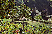 Europe/France/Auvergne/12/Aveyron/Conques : Vendanges et l'abbatiale Sainte-Foy<br /> PHOTO D'ARCHIVES // ARCHIVAL IMAGES<br /> FRANCE 1980