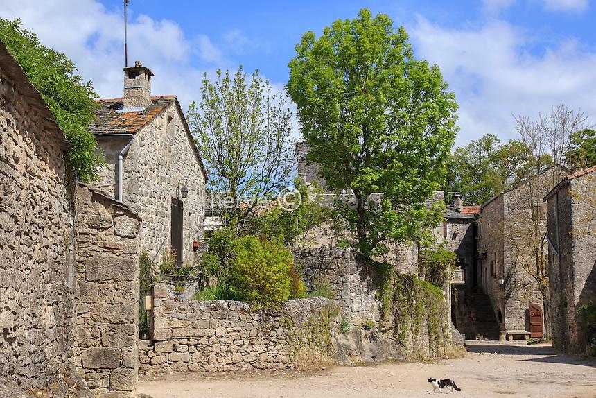 France, Aveyron (12), la Couvertoirade, labellisé Les Plus Beaux Villages de France, rue du village // France, Aveyron, la Couvertoirade, labelled Les Plus Beaux Villages de France (The most beautiful villages of France), in the village
