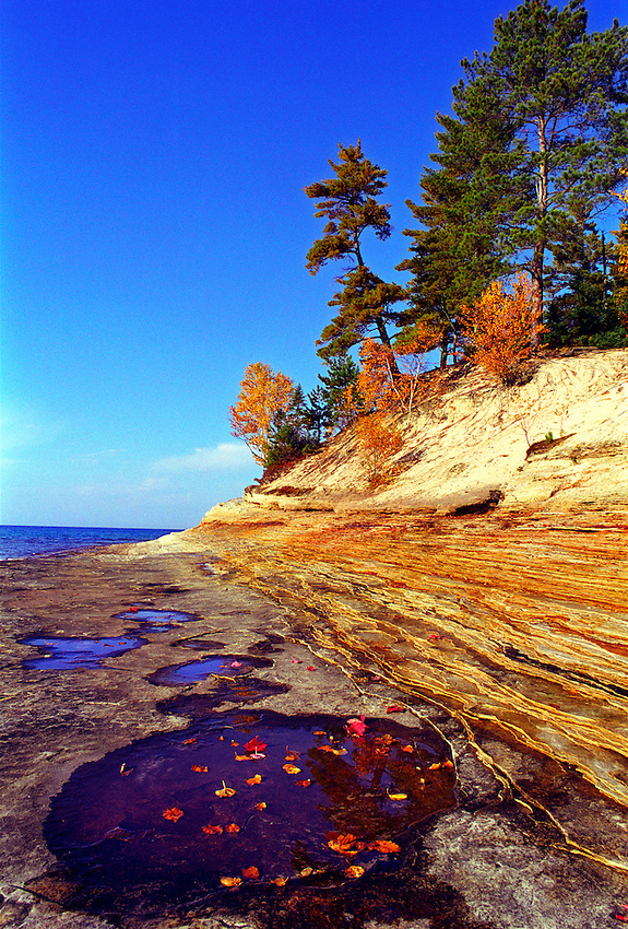 COLORED LEAVES LIE IN A PUDDLE ON A BEACH NEAR THE MOSQUITO RIVER IN PICTURED ROCKS NATIONAL LAKESHORE NEAR MUNISING MICHIGAN.