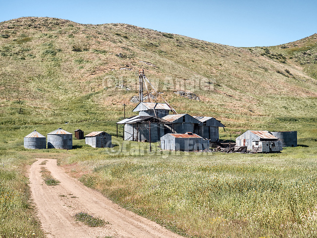 Grain tanks and elevator, rusting corrugated metal buildings at the Goodwin Ranch, Carrizo Plain, California.