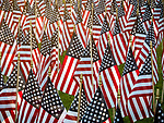 U.S. flags in the Kennedy Commons Park in Anaconda, Montana