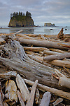 Olympic National Park, WA<br /> Driftwood barrier at the high tide line on Second Beach