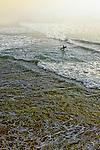 Fog and Surf, Huntington Beach, CA.