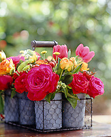 Small buckets in a wire frame basket are filled with herbs and seasonal flowers