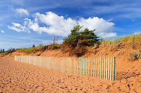 Sandy beach along the dunes with fence