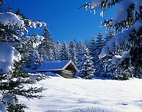 Germany, Bavaria, Upper Bavaria, Werdenfelser Land: Winter scenery with haystack