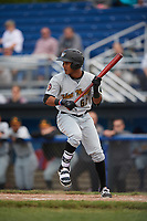 West Virginia Black Bears center fielder Michael De La Cruz (62) squares to bunt during a game against the Batavia Muckdogs on June 25, 2017 at Dwyer Stadium in Batavia, New York.  West Virginia defeated Batavia 6-4 in the completion of the game started on June 24th.  (Mike Janes/Four Seam Images)