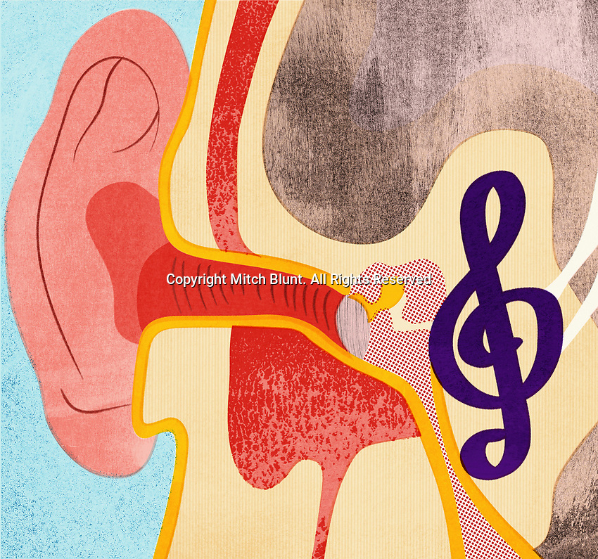 Cross section of the human ear listening to music ExclusiveImage