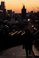 Sunset over Fujimizaka (Mount Fuji viewing Hill) in Nishi Nippori, Tokyo, Japan. Friday January 11th 2013. This is the last street level place in central Tokyo to see Mount Fuji and is threaten with development that will block the view of this iconic peak.