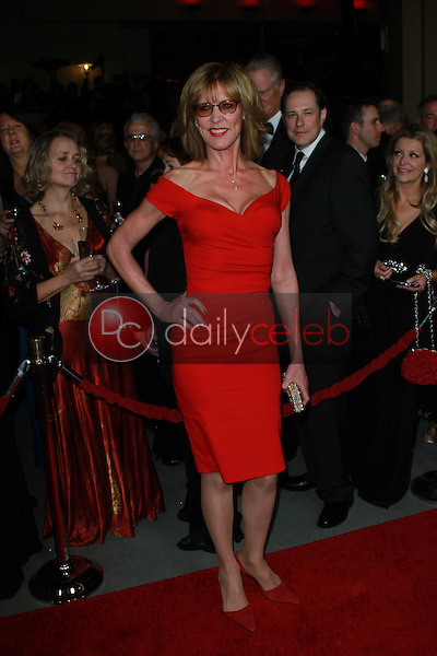 Christine Lahti<br /> at the 64th Annual Directors Guild Of America Awards, Hollywood & Highland, Hollywood, CA 01-28-12<br /> David Edwards/DailyCeleb.com 818-249-4998