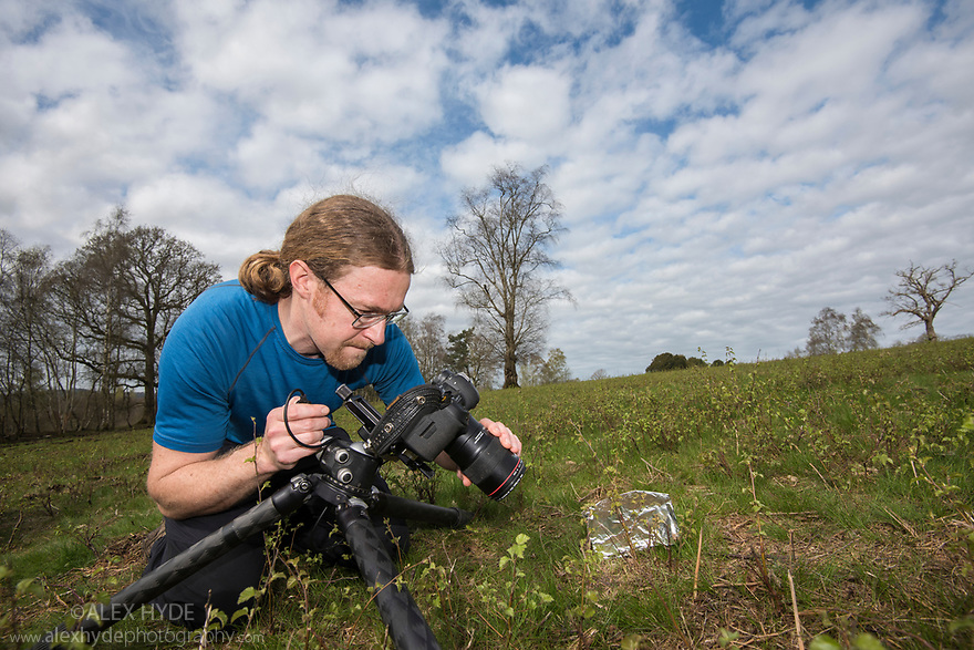 Photographer Alex Hyde working with Field Crickets (Gryllus campestris) for the Back from the Brink project.