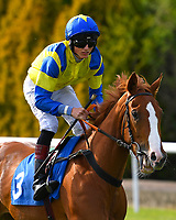 Your Choice ridden by George Wood goes down to the start of The Penang Turf Club Malaysia Handicap (Class 5)   during Afternoon Racing at Salisbury Racecourse on 17th May 2018