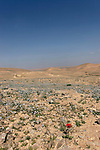 Israel, the Negev desert. Foothill of Mount Avnon