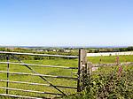 Countryside summer landscape near St Keverne,  Lizard Peninsula, Cornwall, England, UK