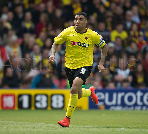 02.05.2015.  Watford, England. Skybet Championship. Watford versus Sheffield Wednesday. Watford's Troy Deeney races forward.