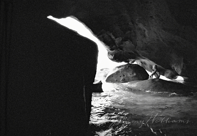 A young girl sits inside of a hidden rock cove in the carribean