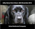 Lilley Manor Farm  26th November 2012