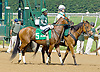 """Lemon Juice  before The Grover """"Buddy"""" Delp Memorial Stakes at Delaware Park on 5/23/12"""